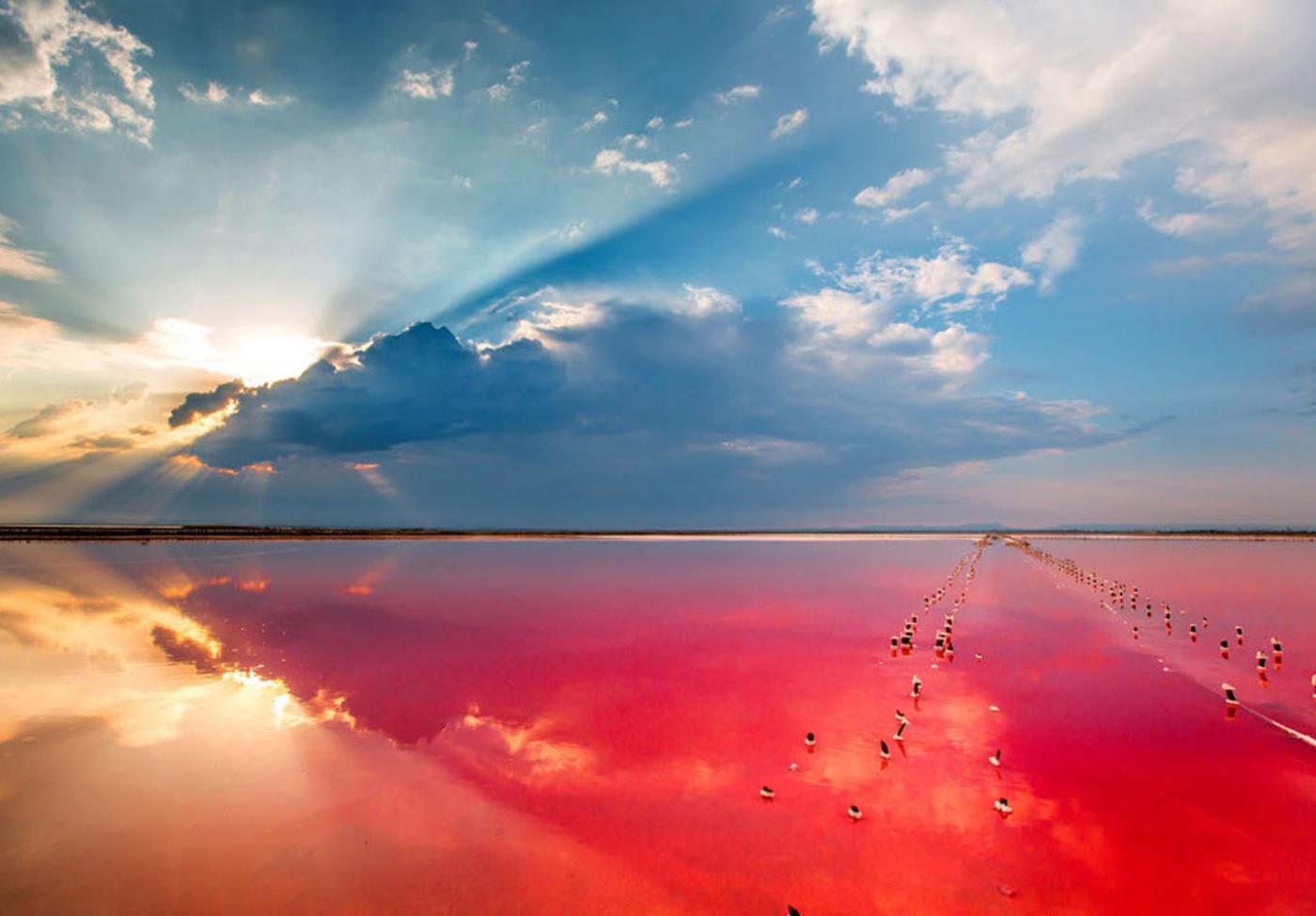 Sivash-Lake-Crimea-2